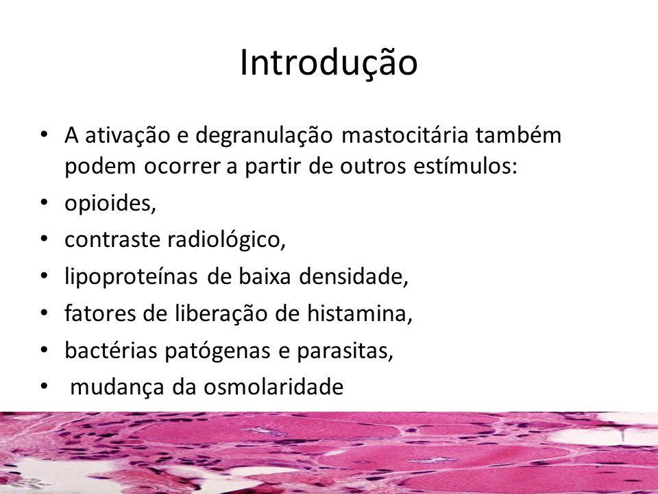 Introdução A ativação e degranulação mastocitária também podem ocorrer a partir de outros estímulos: