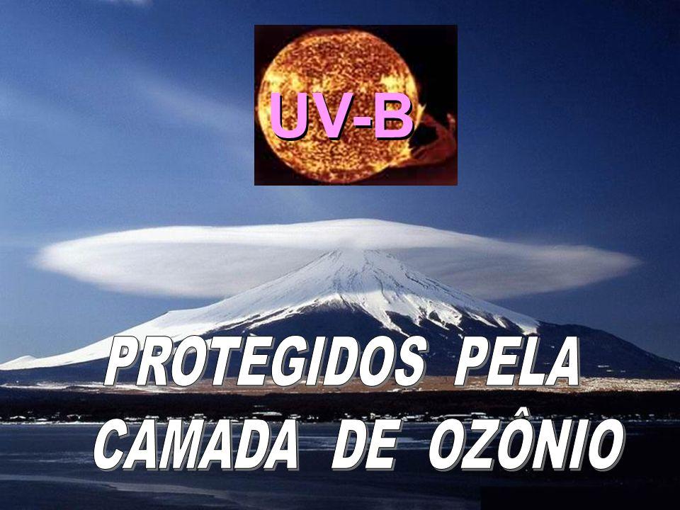 UV-B PROTEGIDOS PELA CAMADA DE OZÔNIO