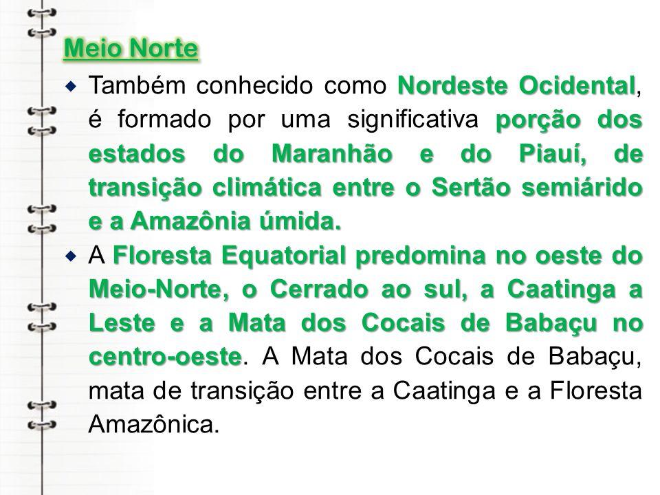 Meio Norte