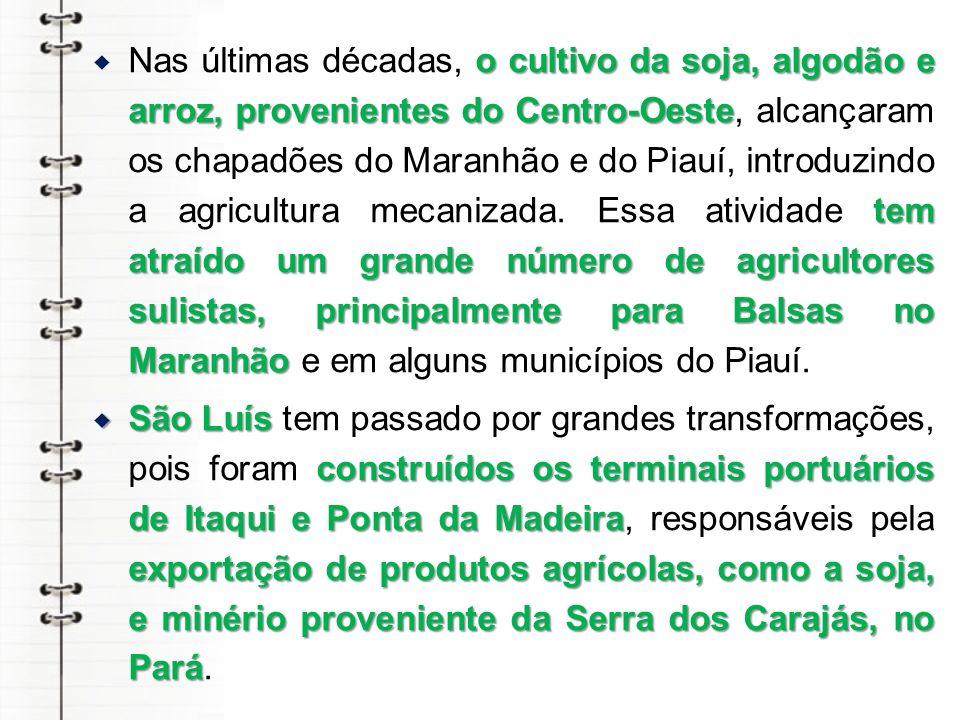 Nas últimas décadas, o cultivo da soja, algodão e arroz, provenientes do Centro-Oeste, alcançaram os chapadões do Maranhão e do Piauí, introduzindo a agricultura mecanizada. Essa atividade tem atraído um grande número de agricultores sulistas, principalmente para Balsas no Maranhão e em alguns municípios do Piauí.
