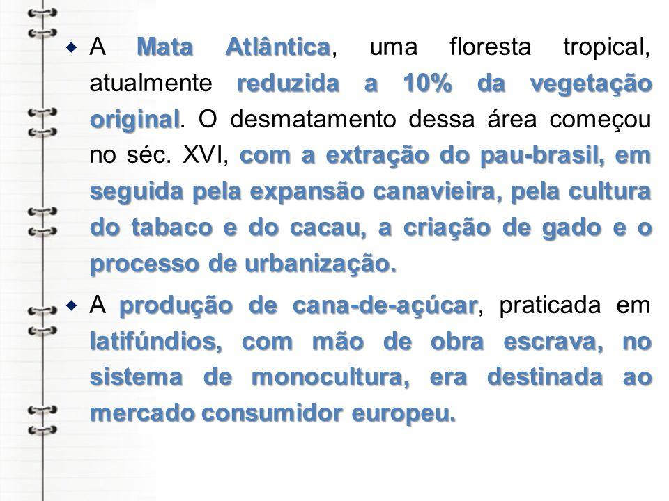 A Mata Atlântica, uma floresta tropical, atualmente reduzida a 10% da vegetação original. O desmatamento dessa área começou no séc. XVI, com a extração do pau-brasil, em seguida pela expansão canavieira, pela cultura do tabaco e do cacau, a criação de gado e o processo de urbanização.