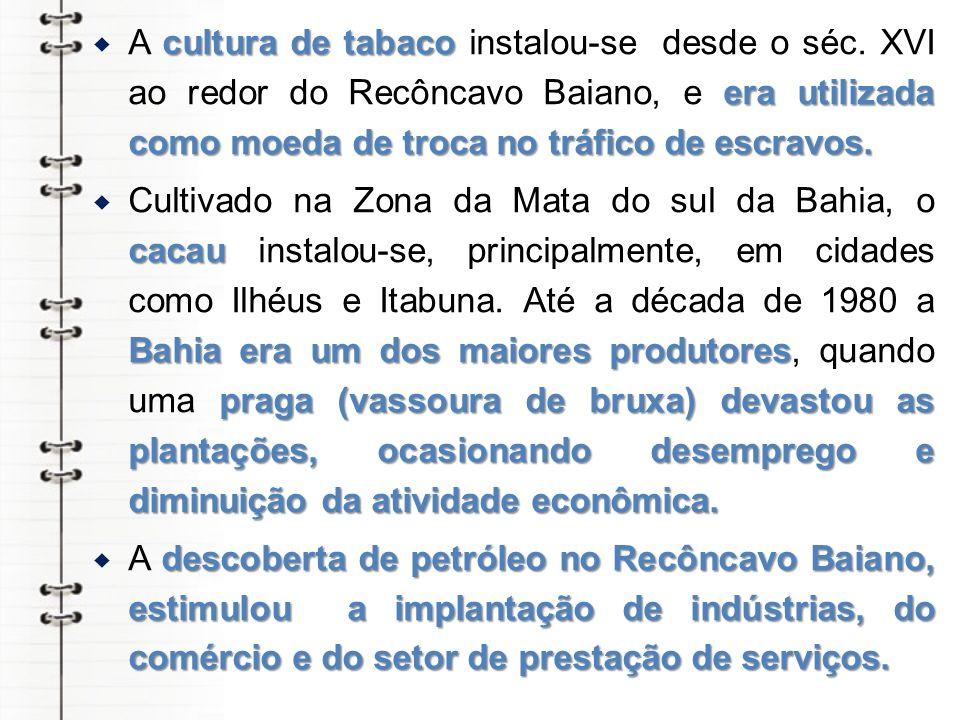 A cultura de tabaco instalou-se desde o séc