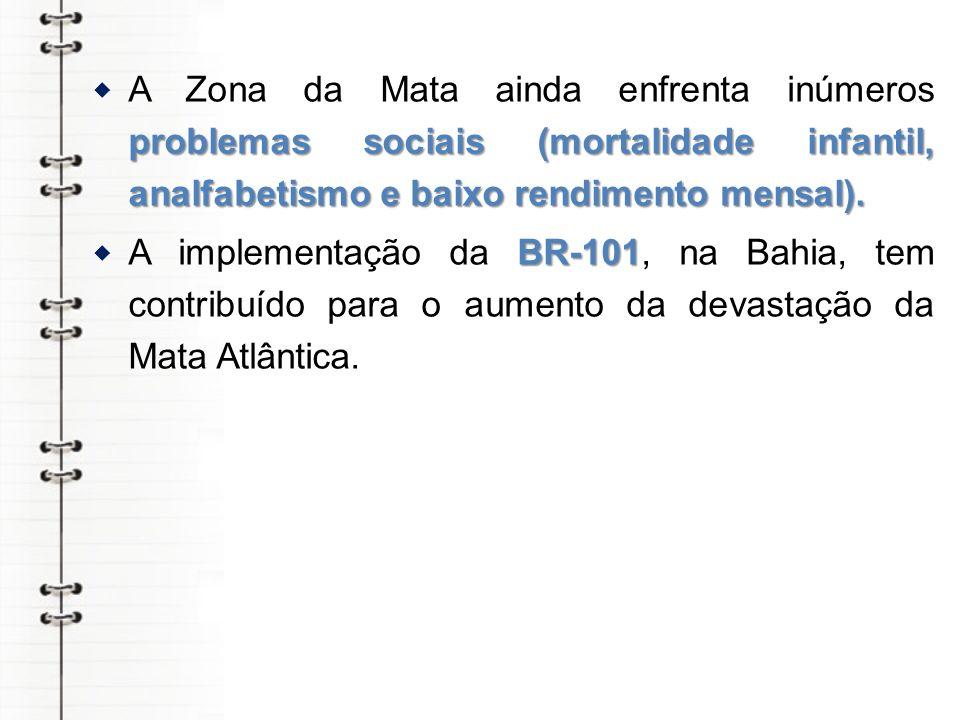 A Zona da Mata ainda enfrenta inúmeros problemas sociais (mortalidade infantil, analfabetismo e baixo rendimento mensal).