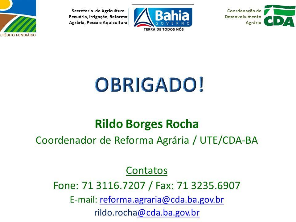 OBRIGADO! Rildo Borges Rocha