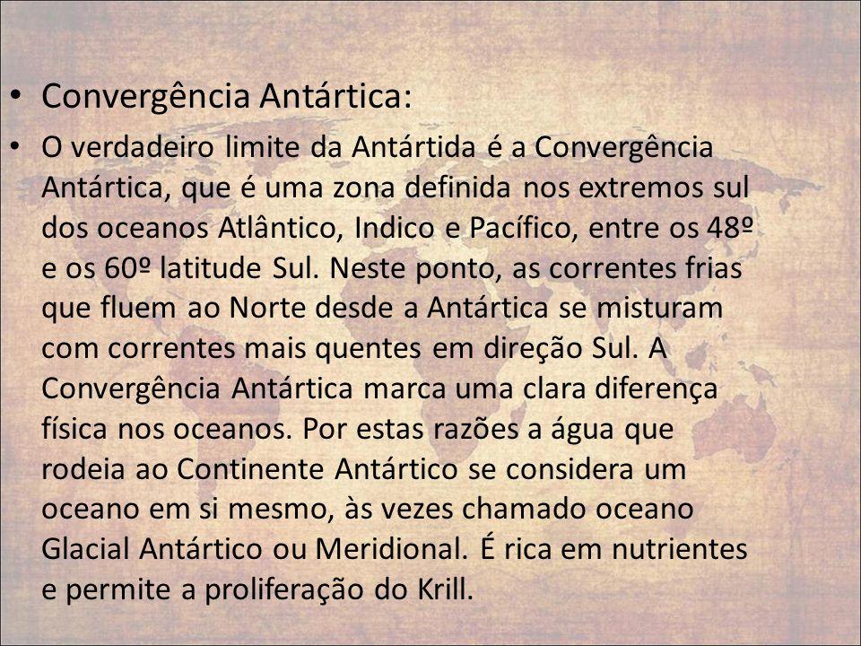Convergência Antártica: