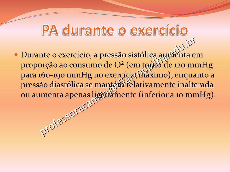 PA durante o exercício professoracamila@iffarroupilha.edu.br