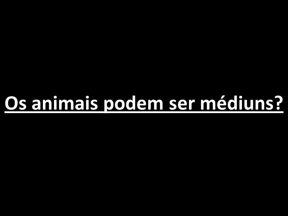 Os animais podem ser médiuns