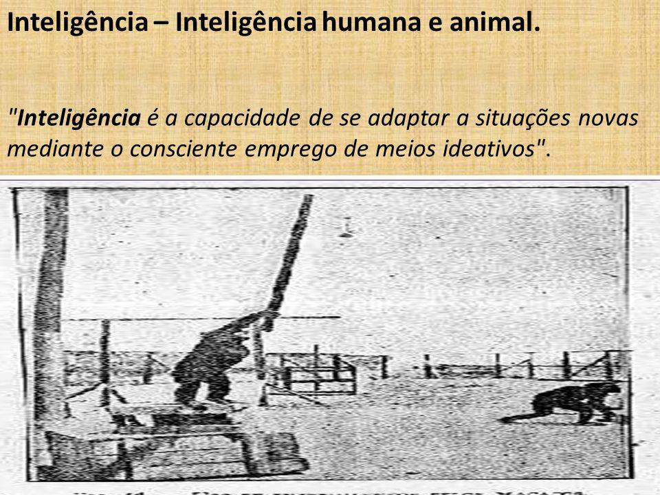 Inteligência – Inteligência humana e animal.