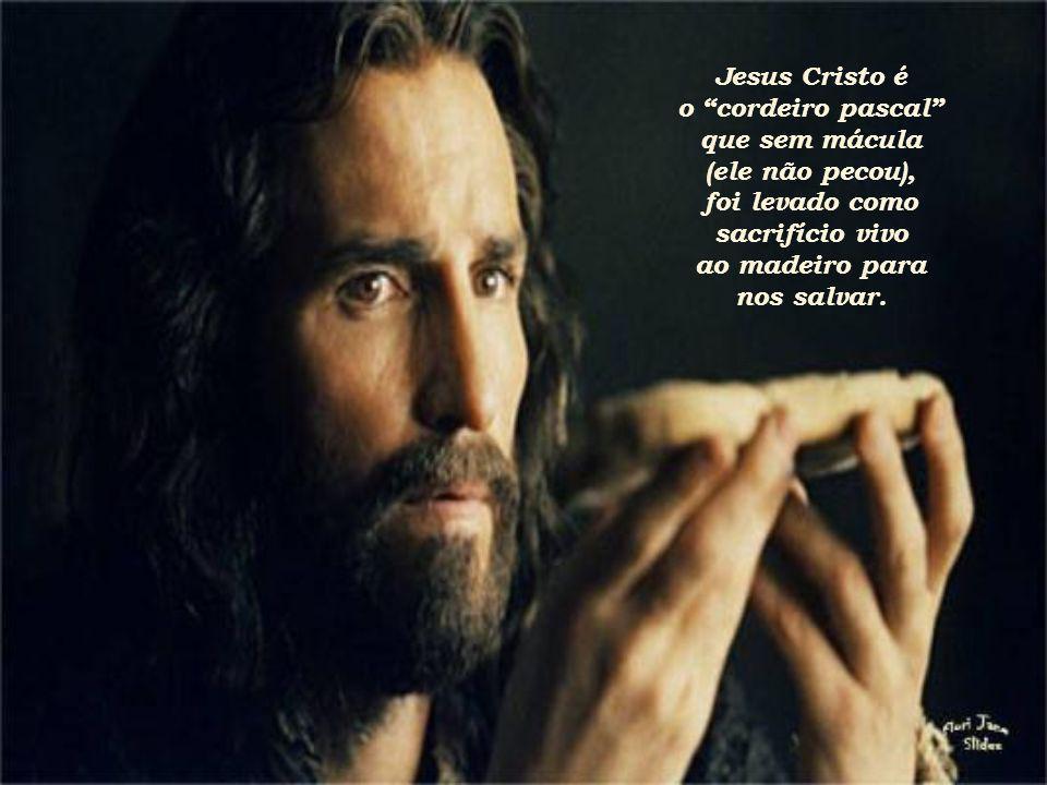 Jesus Cristo é o cordeiro pascal que sem mácula. (ele não pecou), foi levado como. sacrifício vivo.