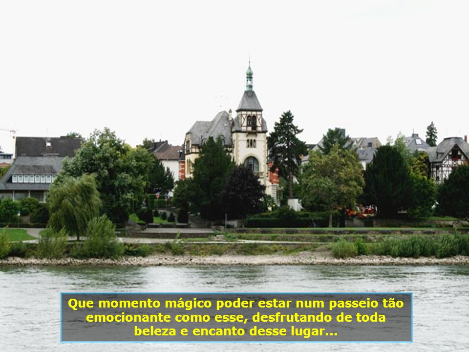 IMG_2654 - ALEMANHA - ST. GOARSHAUSEN - CRUZEIRO NO RENO-700.jpg