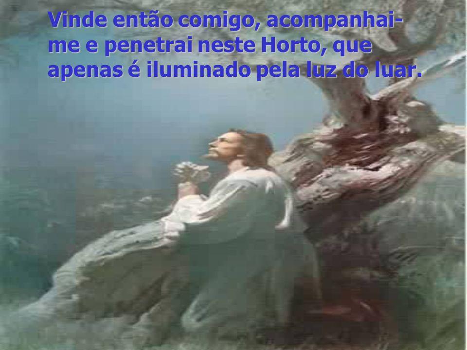 Vinde então comigo, acompanhai-me e penetrai neste Horto, que apenas é iluminado pela luz do luar.