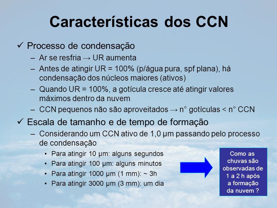 Características dos CCN