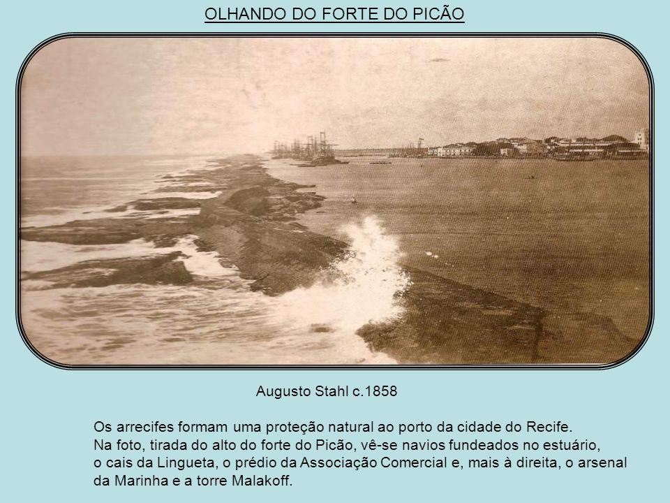 OLHANDO DO FORTE DO PICÃO