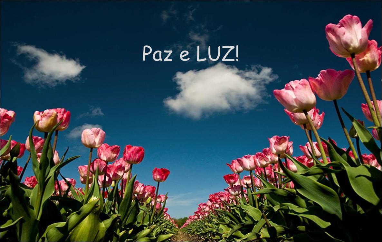 Paz e LUZ!