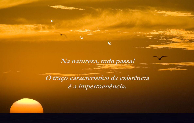 Na natureza, tudo passa! O traço característico da existência é a impermanência.