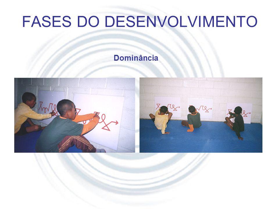 FASES DO DESENVOLVIMENTO
