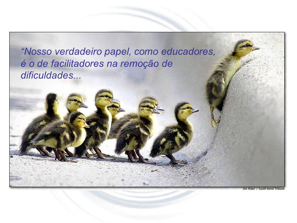 Nosso verdadeiro papel, como educadores, é o de facilitadores na remoção de dificuldades...