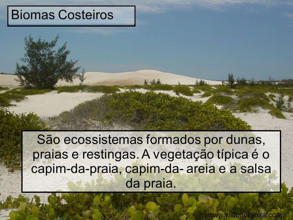 Biomas Costeiros