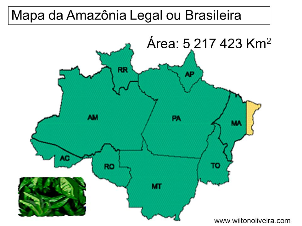 Mapa da Amazônia Legal ou Brasileira