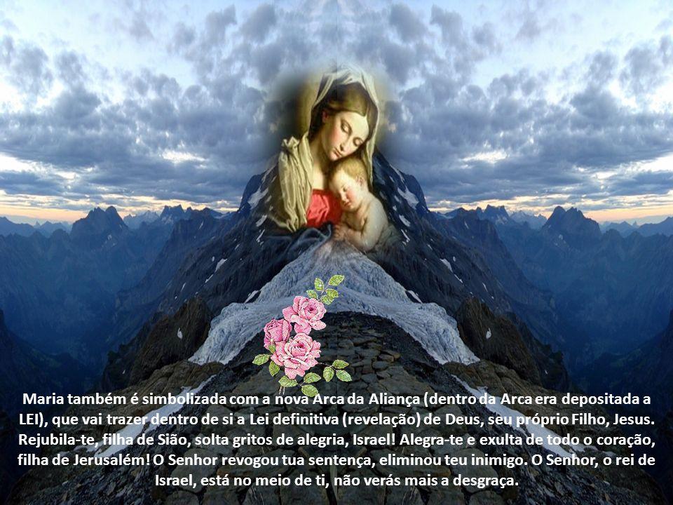 Maria também é simbolizada com a nova Arca da Aliança (dentro da Arca era depositada a LEI), que vai trazer dentro de si a Lei definitiva (revelação) de Deus, seu próprio Filho, Jesus.