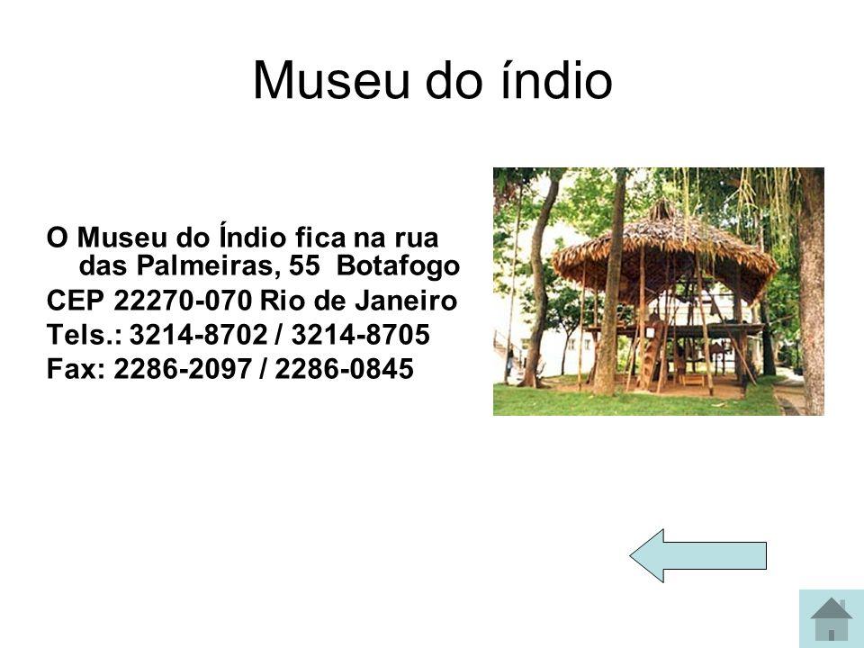 Museu do índio O Museu do Índio fica na rua das Palmeiras, 55 Botafogo