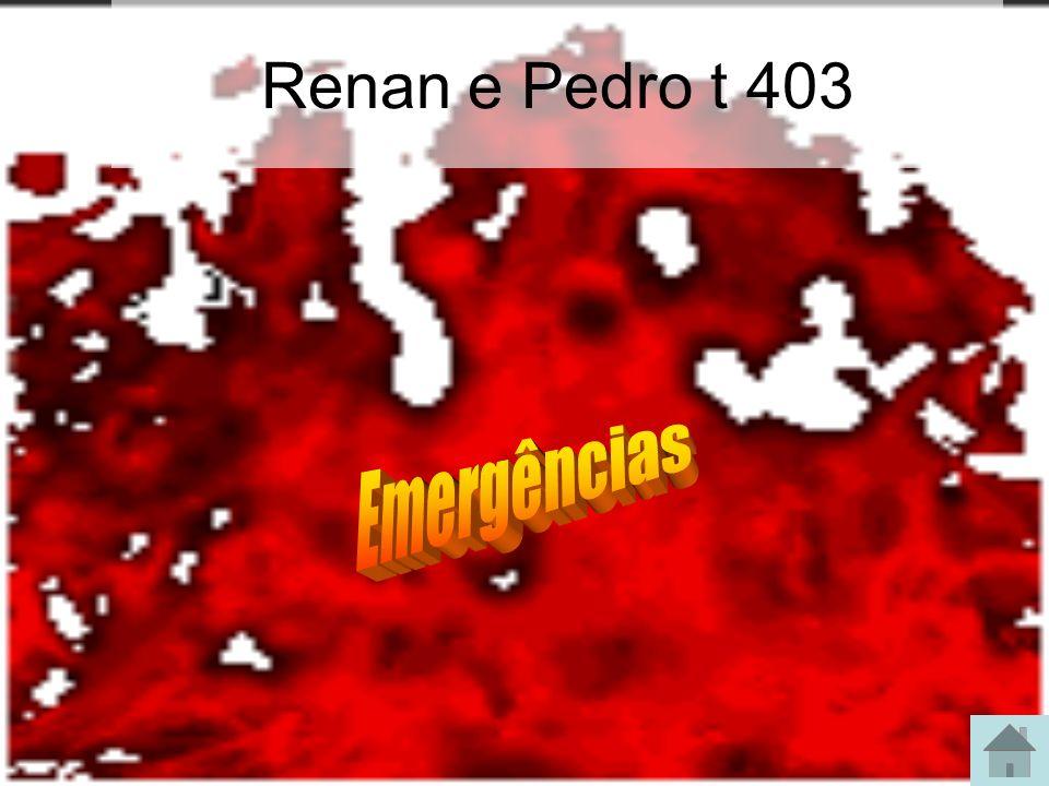 Renan e Pedro t 403 Emergências