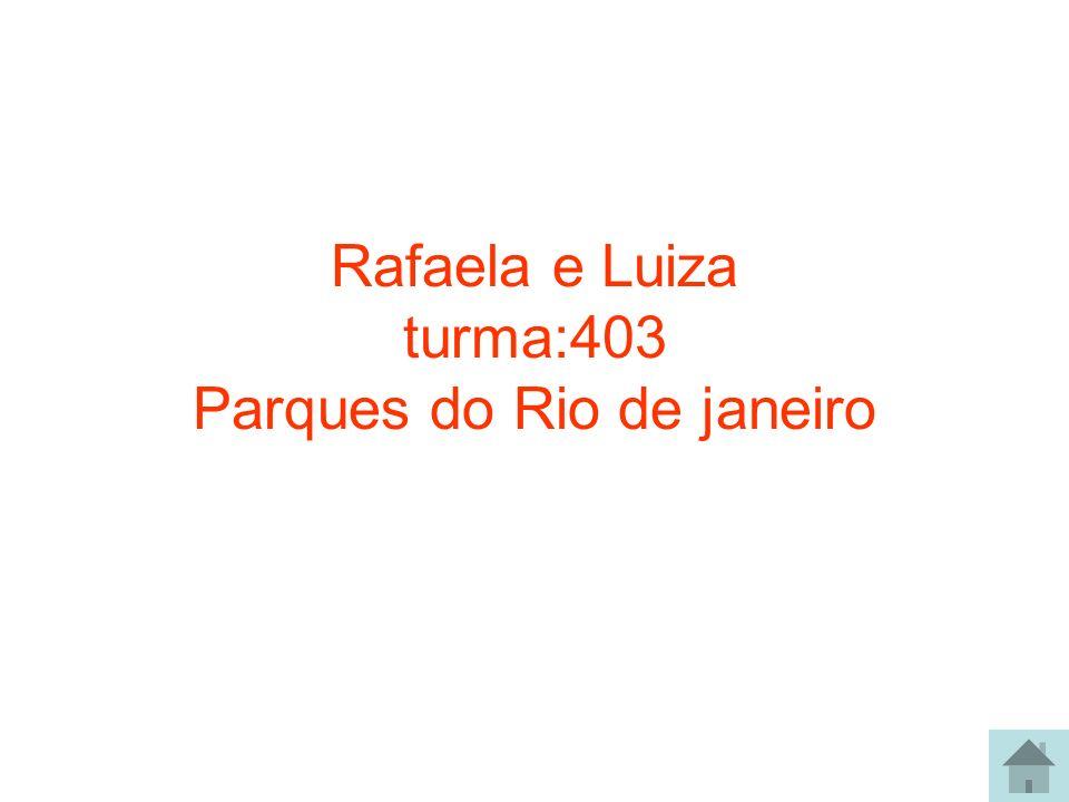 Rafaela e Luiza turma:403 Parques do Rio de janeiro
