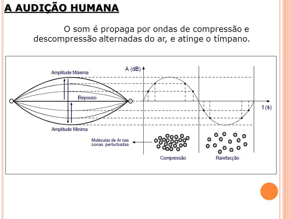 A AUDIÇÃO HUMANA O som é propaga por ondas de compressão e descompressão alternadas do ar, e atinge o tímpano.