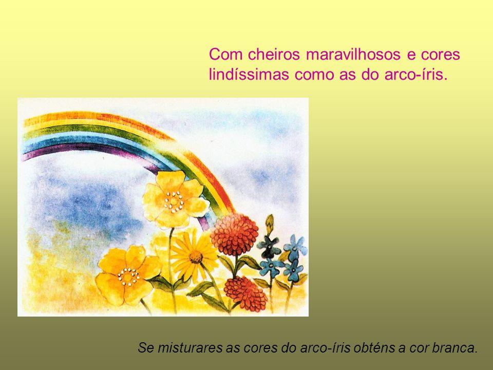 Com cheiros maravilhosos e cores lindíssimas como as do arco-íris.
