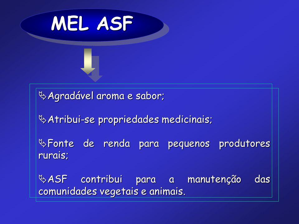 MEL ASF Agradável aroma e sabor; Atribui-se propriedades medicinais;