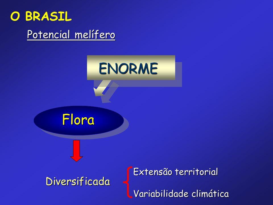 ENORME Flora O BRASIL Potencial melífero Diversificada