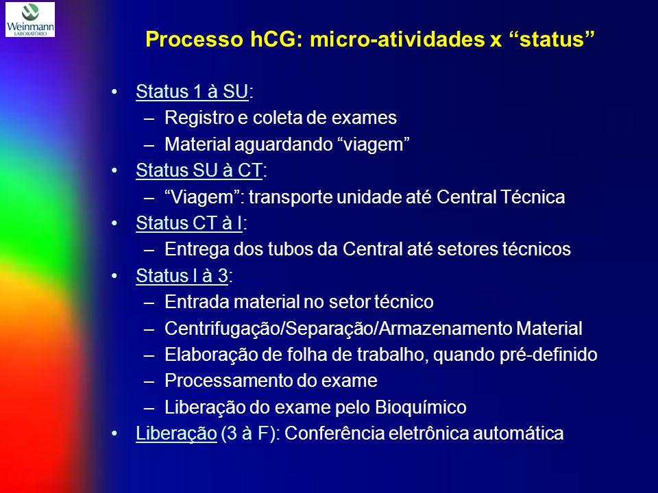 Processo hCG: micro-atividades x status