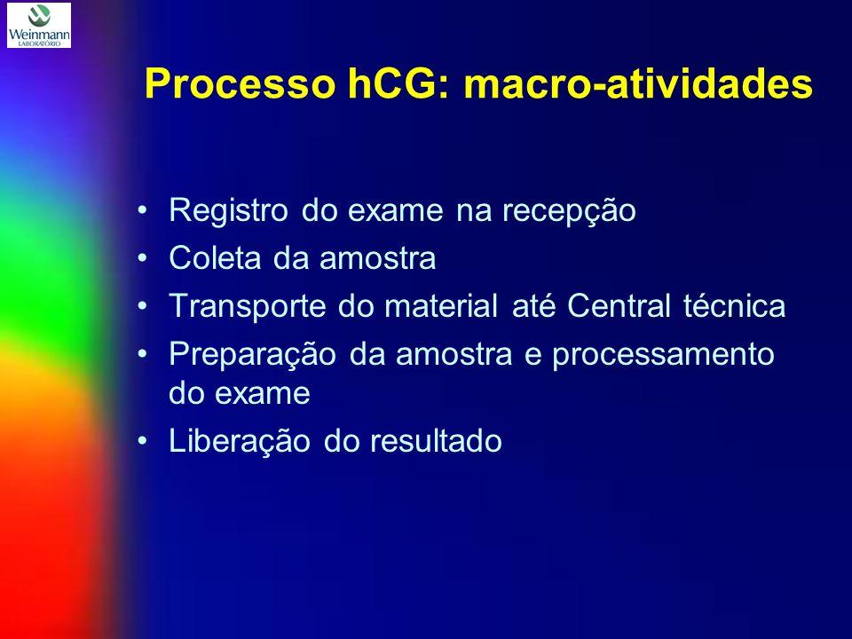 Processo hCG: macro-atividades