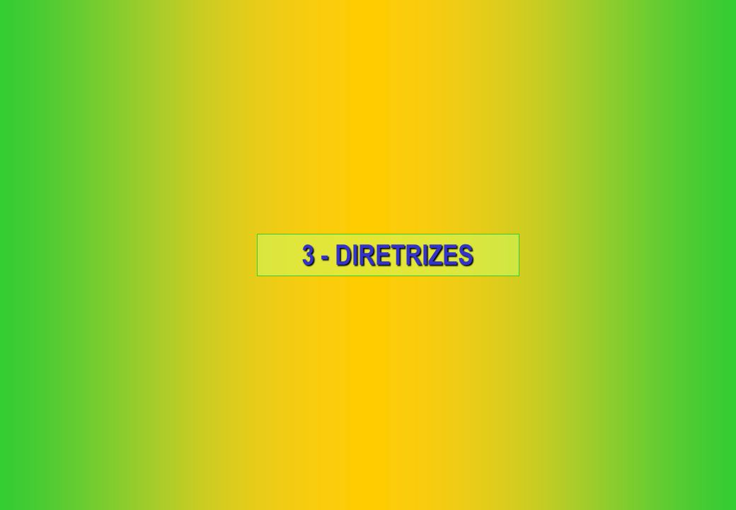 3 - DIRETRIZES