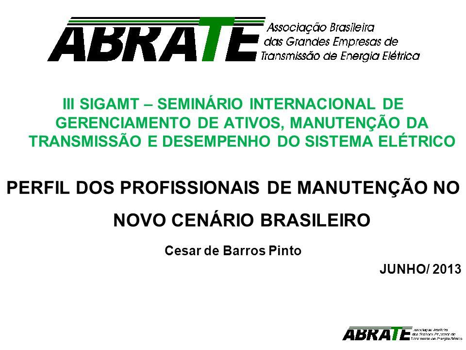 PERFIL DOS PROFISSIONAIS DE MANUTENÇÃO NO NOVO CENÁRIO BRASILEIRO