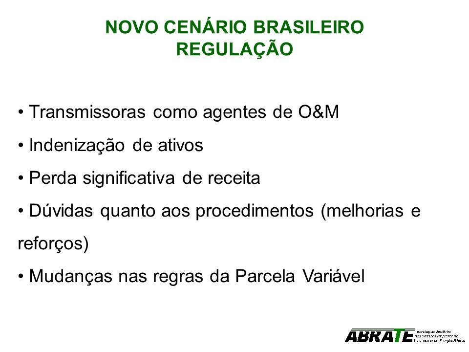 NOVO CENÁRIO BRASILEIRO REGULAÇÃO
