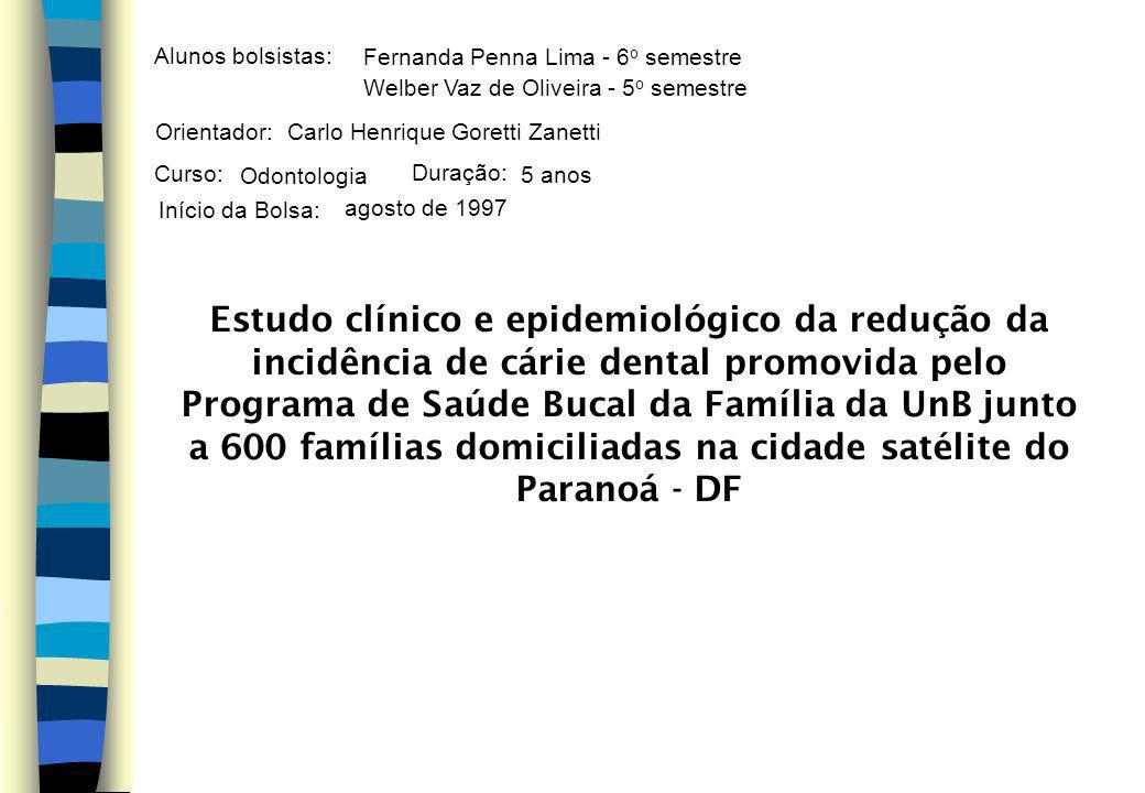 Alunos bolsistas: Fernanda Penna Lima - 6o semestre. Welber Vaz de Oliveira - 5o semestre. Orientador: