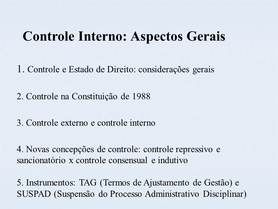 Controle Interno: Aspectos Gerais
