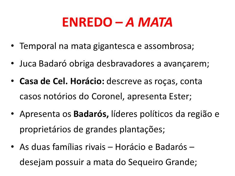 ENREDO – A MATA Temporal na mata gigantesca e assombrosa;