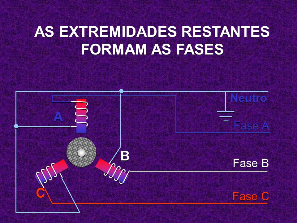 AS EXTREMIDADES RESTANTES FORMAM AS FASES