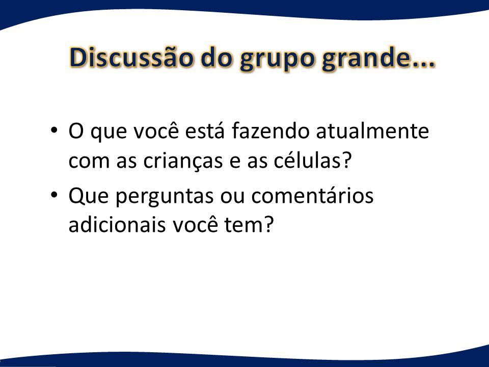 Discussão do grupo grande...