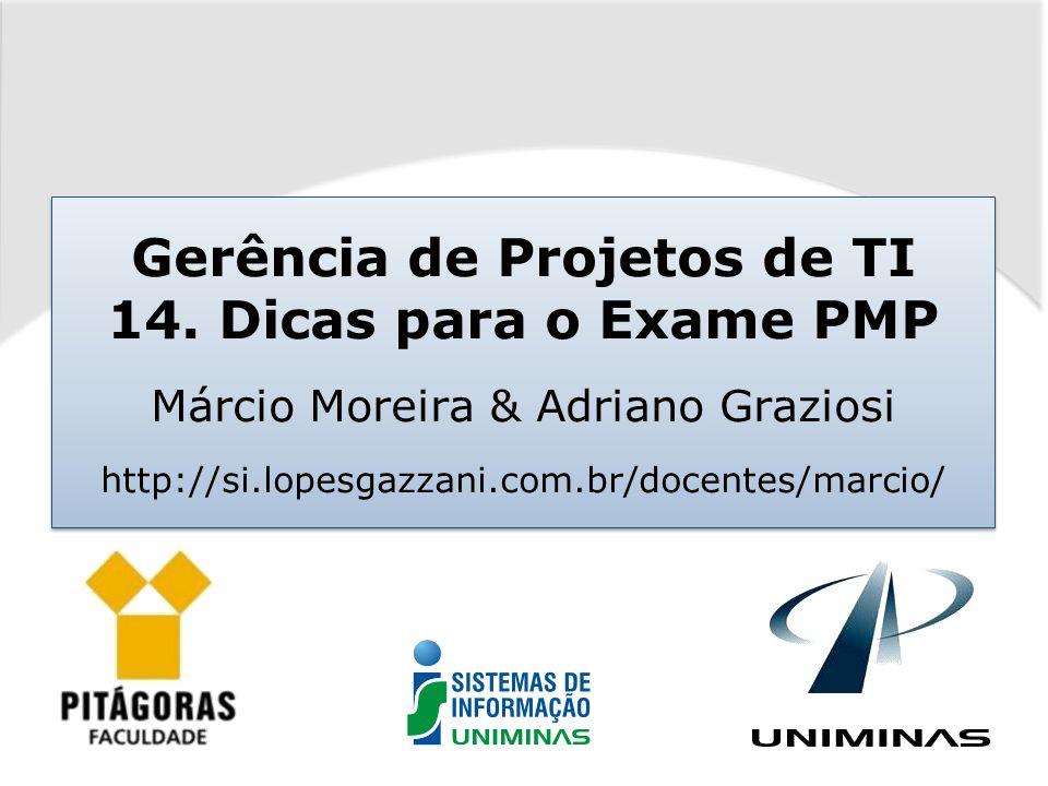 Gerência de Projetos de TI 14