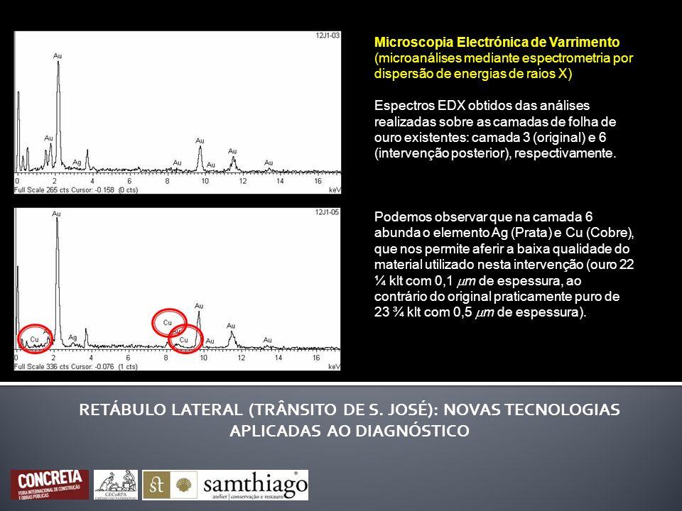 Microscopia Electrónica de Varrimento (microanálises mediante espectrometria por dispersão de energias de raios X)