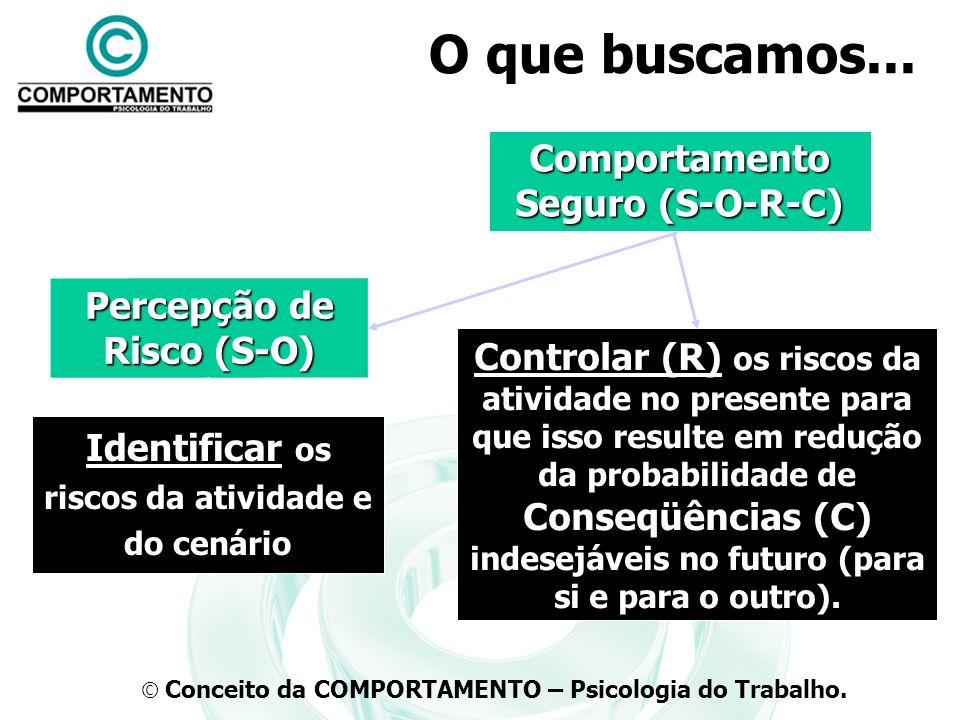 Comportamento Seguro (S-O-R-C) Percepção de Risco (S-O)