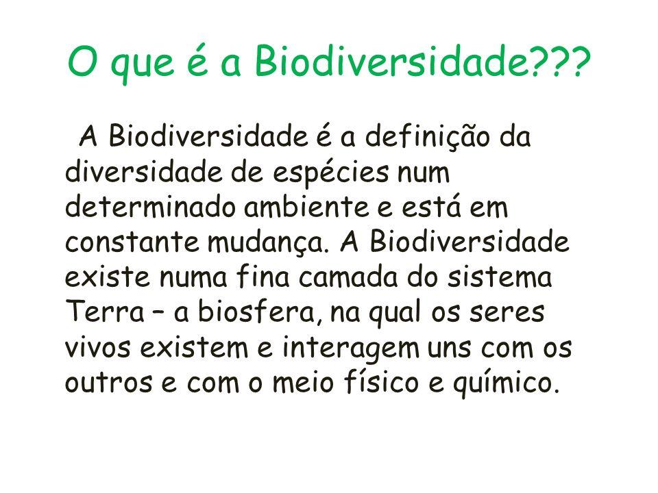 O que é a Biodiversidade