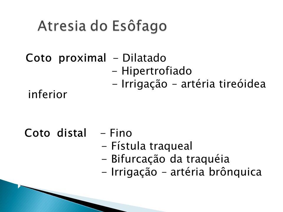Atresia do Esôfago - Hipertrofiado