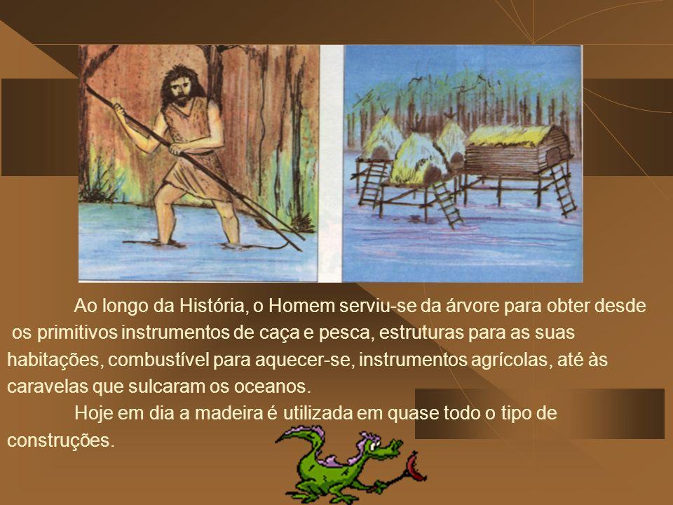 os primitivos instrumentos de caça e pesca, estruturas para as suas