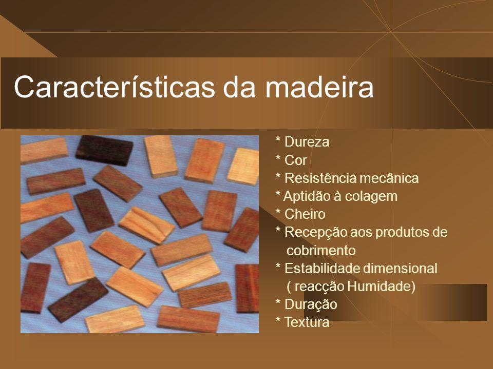Características da madeira