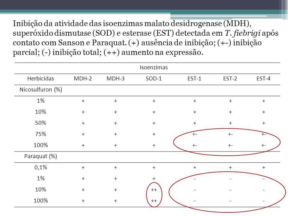 Inibição da atividade das isoenzimas malato desidrogenase (MDH),