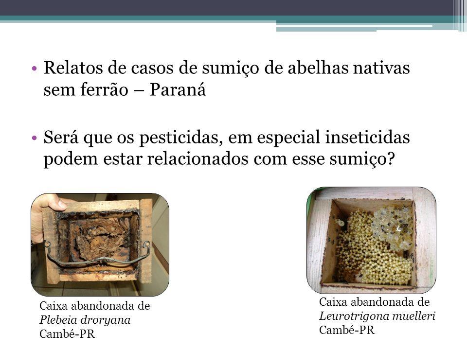 Relatos de casos de sumiço de abelhas nativas sem ferrão – Paraná
